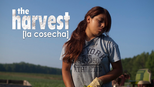 The Harvest/La Cosecha, directed by U Roberto Romano